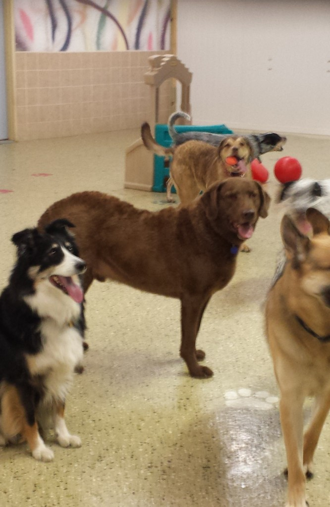 Ben at Daycare